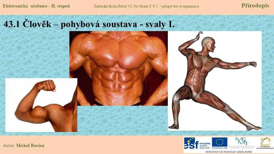 43.1 Člověk – pohybová soustava - svaly I.