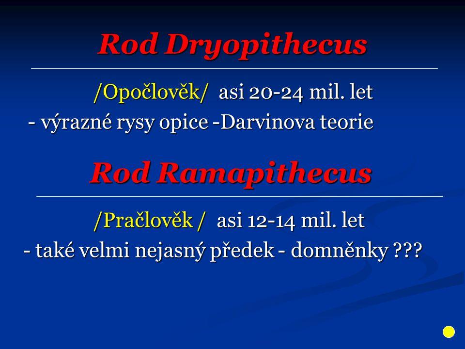 Rod Dryopithecus Rod Ramapithecus
