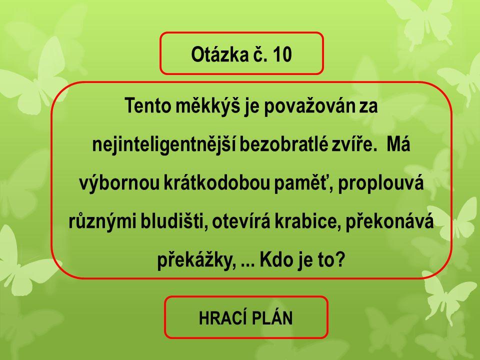 Otázka č. 10