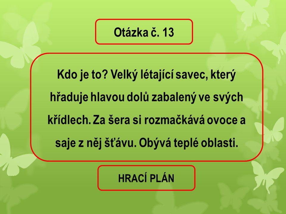Otázka č. 13