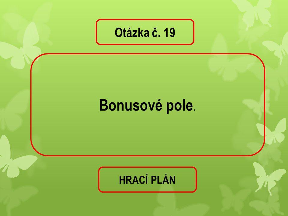 Otázka č. 19 Bonusové pole. HRACÍ PLÁN