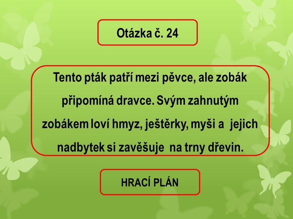 Otázka č. 24