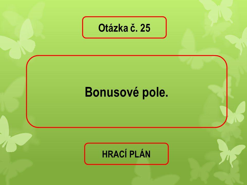 Otázka č. 25 Bonusové pole. HRACÍ PLÁN
