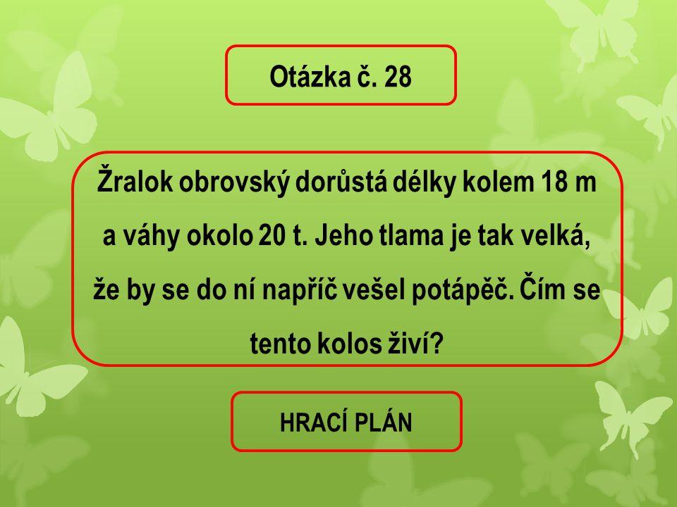 Otázka č. 28