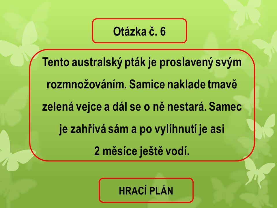 Otázka č. 6