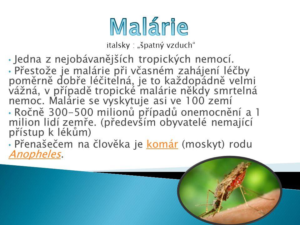 Malárie Jedna z nejobávanějších tropických nemocí.