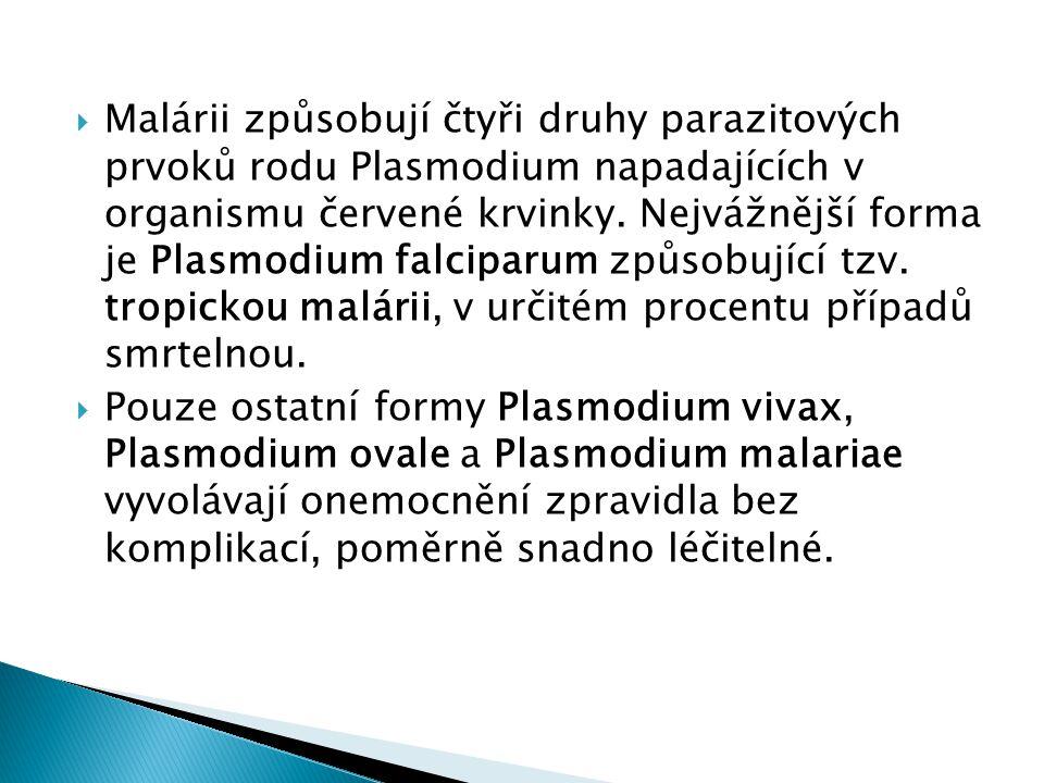 Malárii způsobují čtyři druhy parazitových prvoků rodu Plasmodium napadajících v organismu červené krvinky. Nejvážnější forma je Plasmodium falciparum způsobující tzv. tropickou malárii, v určitém procentu případů smrtelnou.