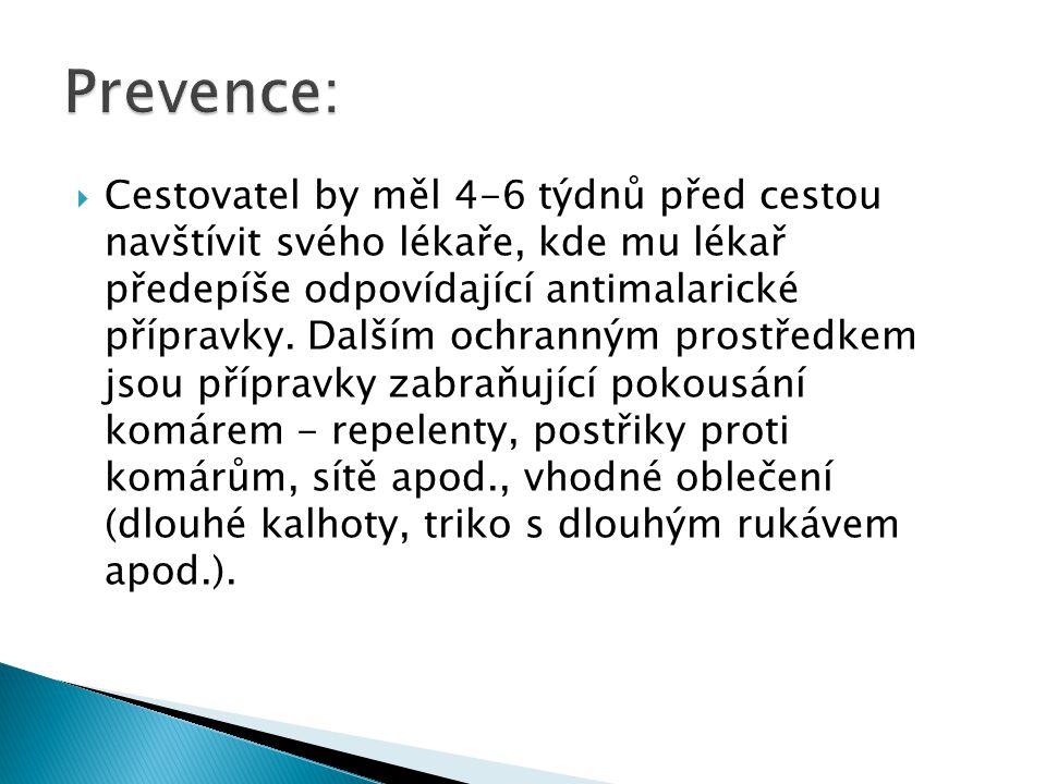 Prevence:
