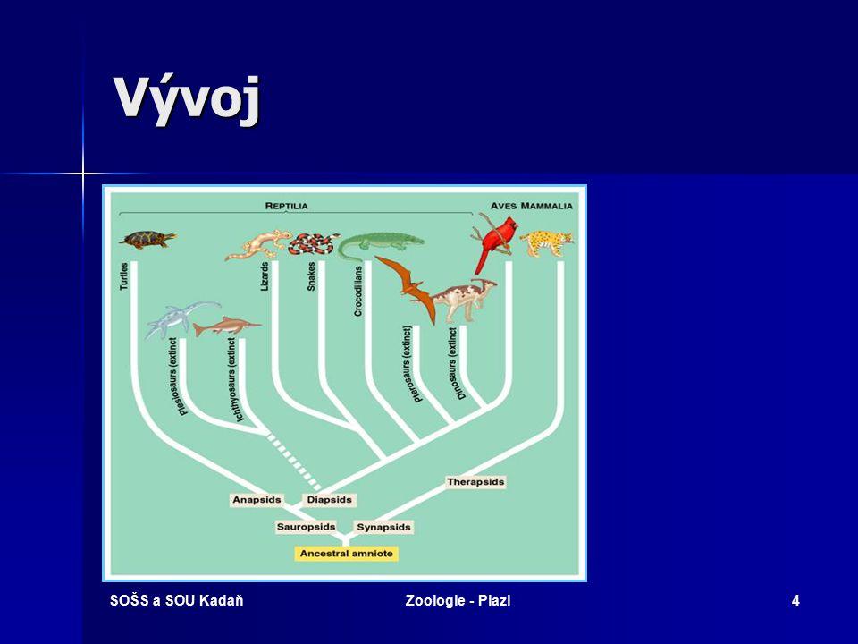 Vývoj SOŠS a SOU Kadaň Zoologie - Plazi