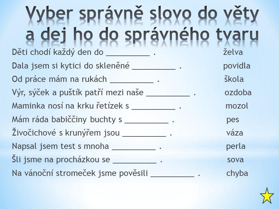 Vyber správně slovo do věty a dej ho do správného tvaru