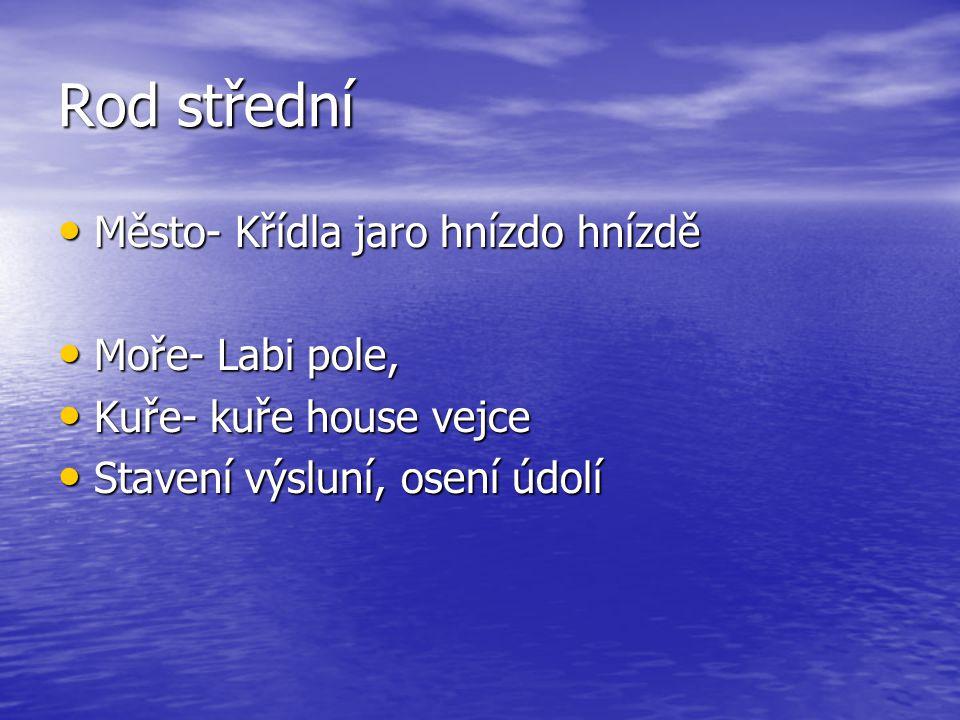 Rod střední Město- Křídla jaro hnízdo hnízdě Moře- Labi pole,