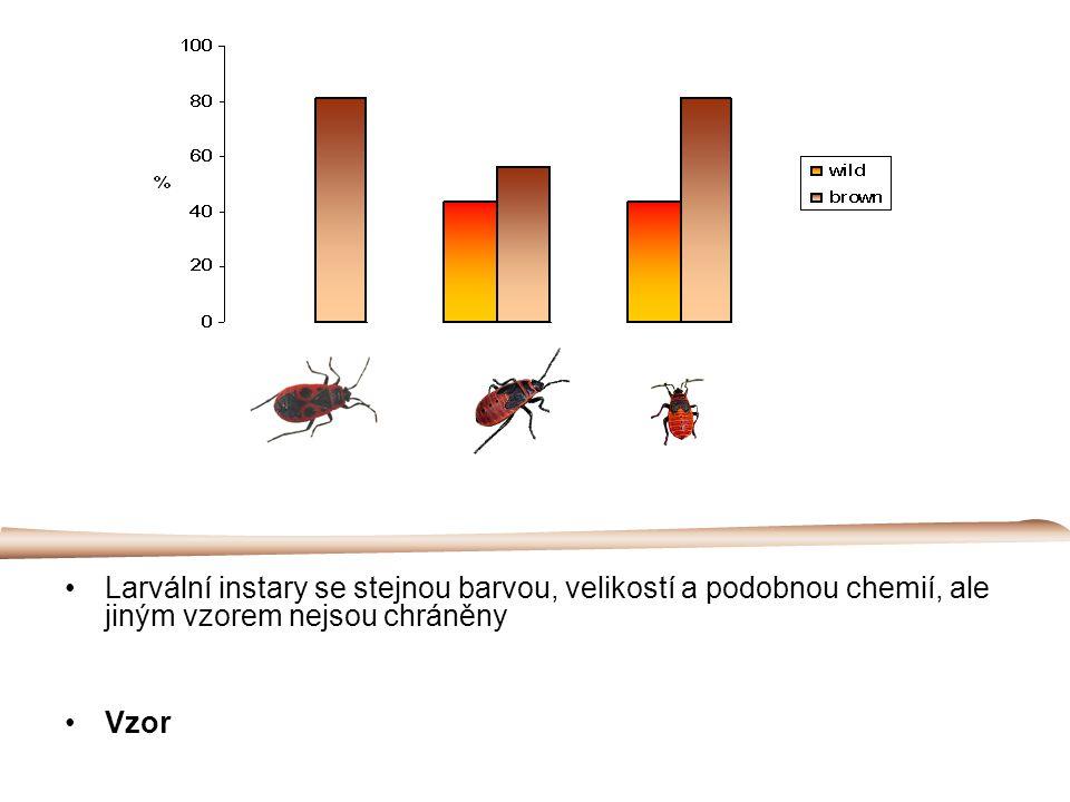 Larvální instary se stejnou barvou, velikostí a podobnou chemií, ale jiným vzorem nejsou chráněny