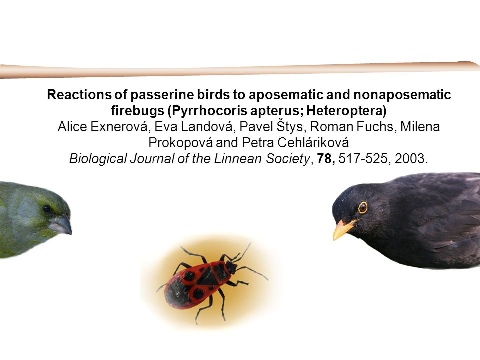 Reactions of passerine birds to aposematic and nonaposematic firebugs (Pyrrhocoris apterus; Heteroptera) Alice Exnerová, Eva Landová, Pavel Štys, Roman Fuchs, Milena Prokopová and Petra Cehláriková Biological Journal of the Linnean Society, 78, 517-525, 2003.