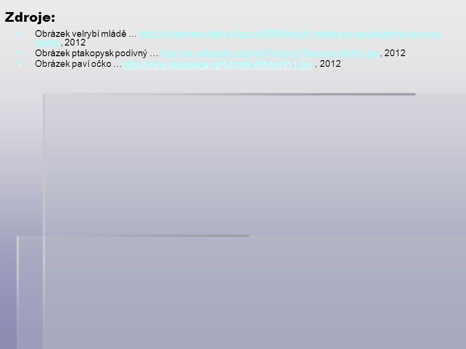 Zdroje: Obrázek velrybí mládě … http://chranmezviratka.blog.cz/0808/velrybi-mlade-povazuje-jachtu-za-svou-matku, 2012.