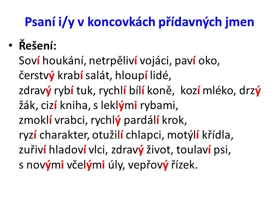 Psaní i/y v koncovkách přídavných jmen