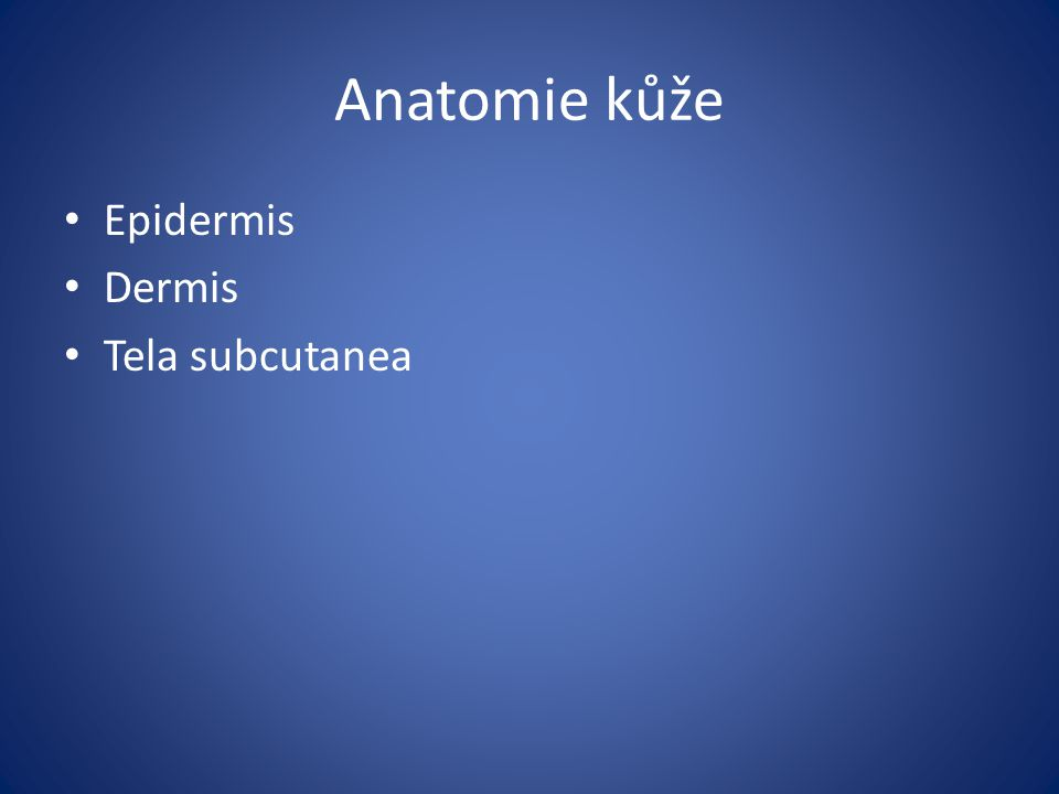 Anatomie kůže Epidermis Dermis Tela subcutanea