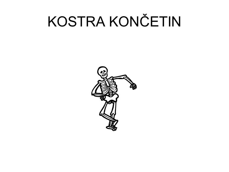 KOSTRA KONČETIN