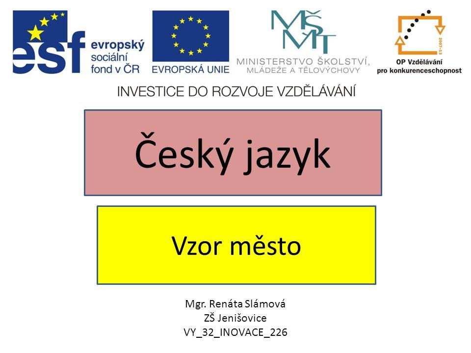 Český jazyk Vzor město Mgr. Renáta Slámová ZŠ Jenišovice