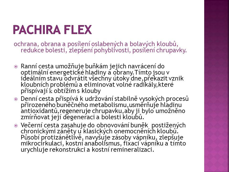 Pachira Flex ochrana, obrana a posílení oslabených a bolavých kloubů, redukce bolesti, zlepšení pohyblivosti, posílení chrupavky.