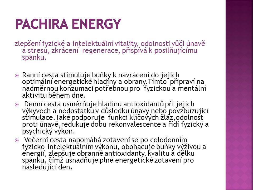 Pachira Energy zlepšení fyzické a intelektuální vitality, odolnosti vůči únavě a stresu, zkrácení regenerace, přispívá k posilňujícímu spánku.