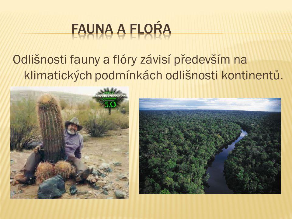 Fauna a floŕa Odlišnosti fauny a flóry závisí především na klimatických podmínkách odlišnosti kontinentů.