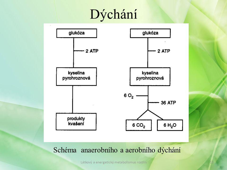 Dýchání Schéma anaerobního a aerobního dýchání