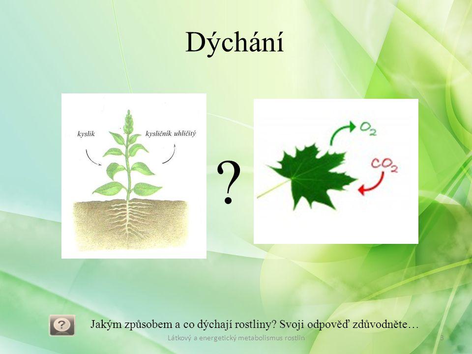 Dýchání . Jakým způsobem a co dýchají rostliny.