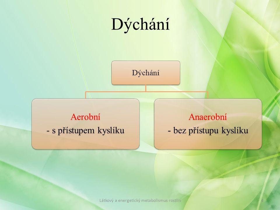 Látkový a energetický metabolismus rostlin