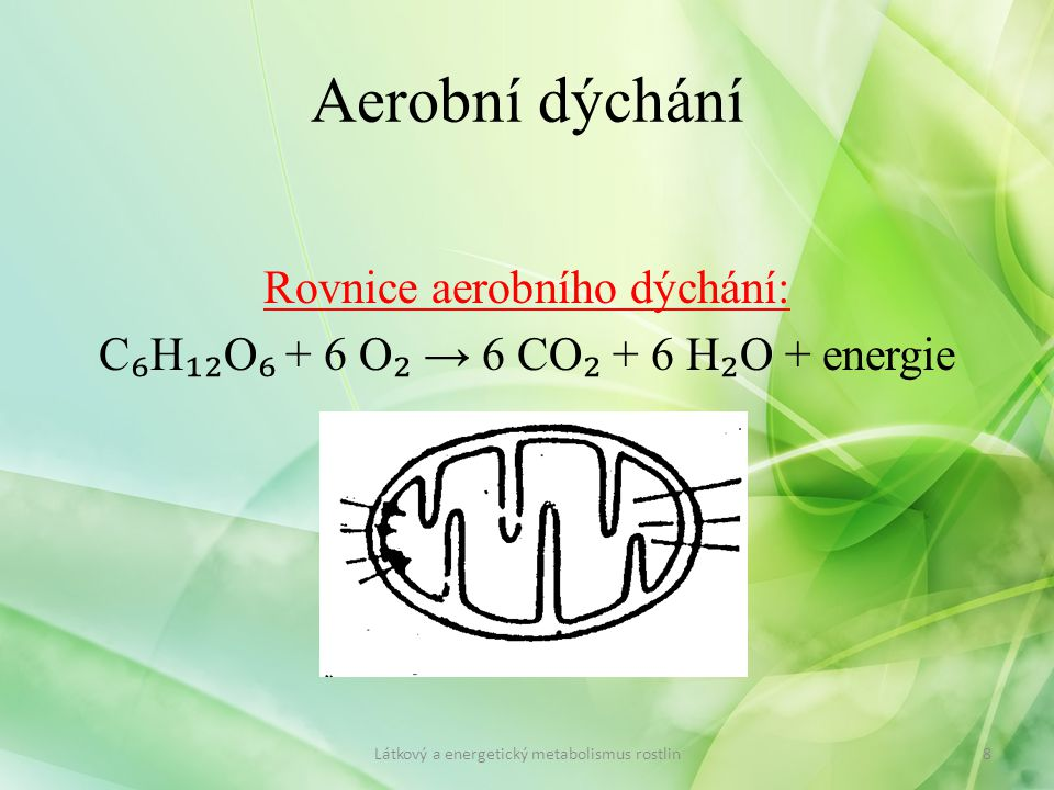 Aerobní dýchání Rovnice aerobního dýchání: