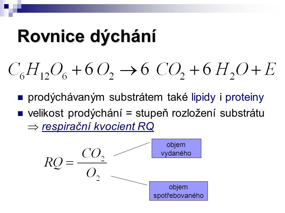 Rovnice dýchání prodýchávaným substrátem také lipidy i proteiny