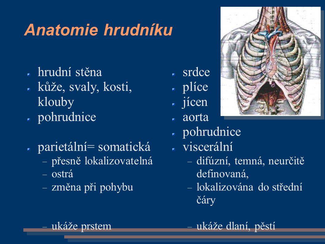 Anatomie hrudníku hrudní stěna kůže, svaly, kosti, klouby pohrudnice