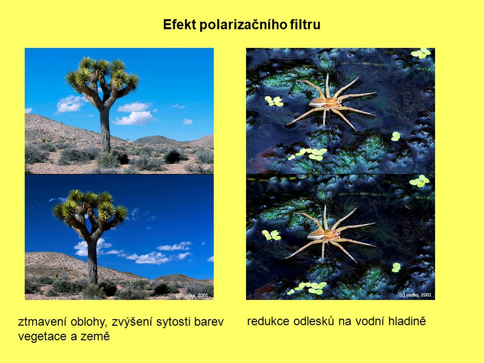 Efekt polarizačního filtru