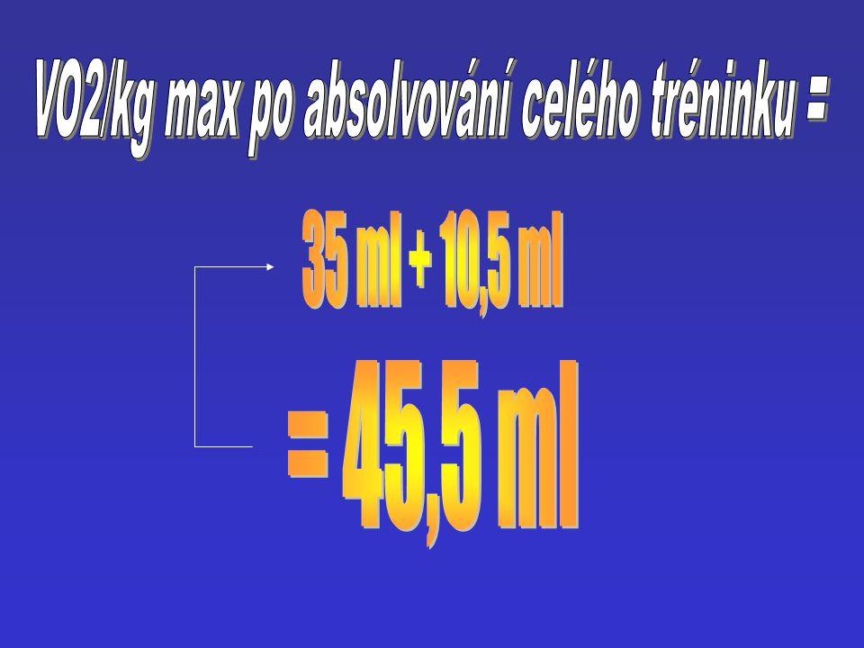 VO2/kg max po absolvování celého tréninku =