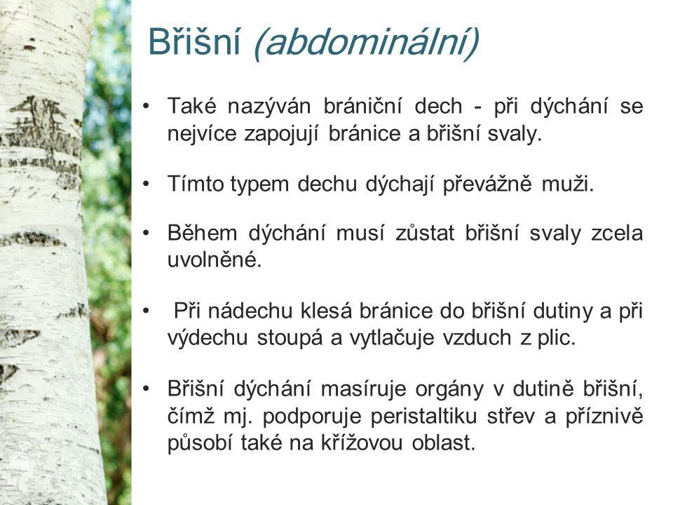 Břišní (abdominální) Také nazýván brániční dech - při dýchání se nejvíce zapojují bránice a břišní svaly.