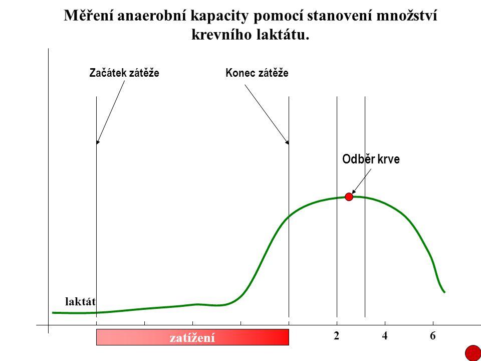 Měření anaerobní kapacity pomocí stanovení množství