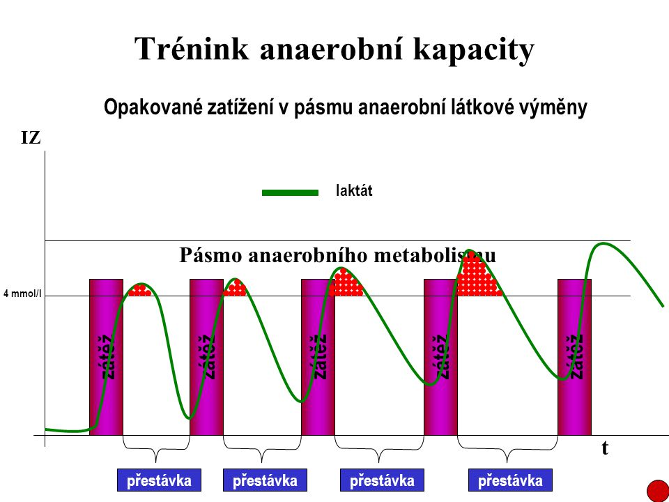 Trénink anaerobní kapacity