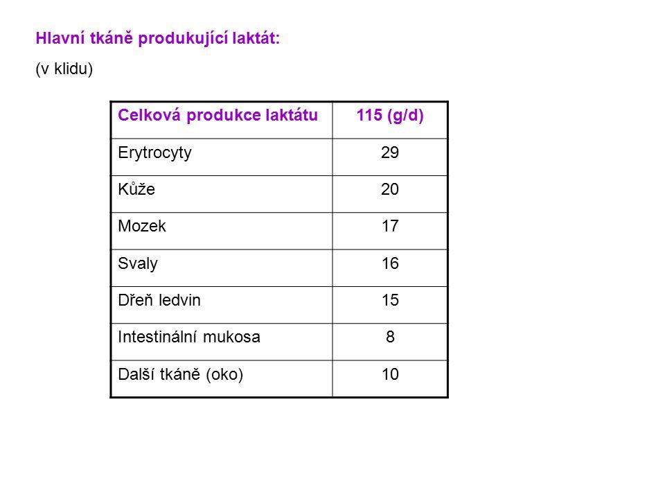 Hlavní tkáně produkující laktát: