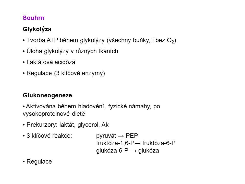 Souhrn Glykolýza. Tvorba ATP během glykolýzy (všechny buňky, i bez O2) Úloha glykolýzy v různých tkáních.