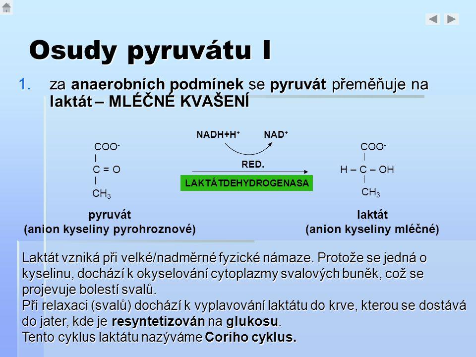 (anion kyseliny pyrohroznové) (anion kyseliny mléčné)