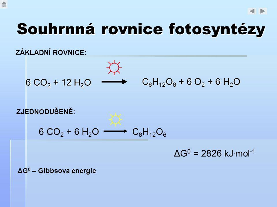 Souhrnná rovnice fotosyntézy