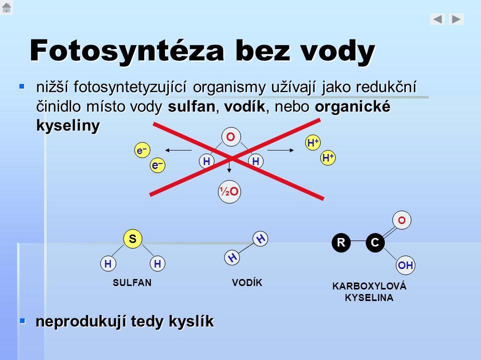 Fotosyntéza bez vody nižší fotosyntetyzující organismy užívají jako redukční činidlo místo vody sulfan, vodík, nebo organické kyseliny.