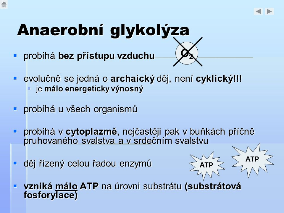 Anaerobní glykolýza O2 probíhá bez přístupu vzduchu