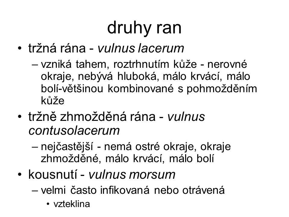 druhy ran tržná rána - vulnus lacerum