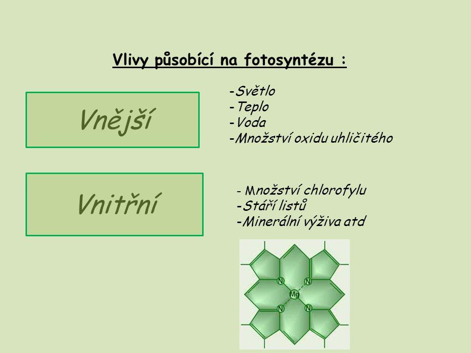 Vlivy působící na fotosyntézu :