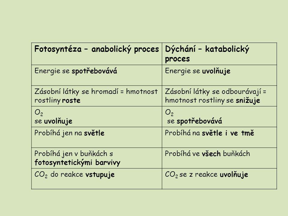 Fotosyntéza – anabolický proces Dýchání – katabolický proces