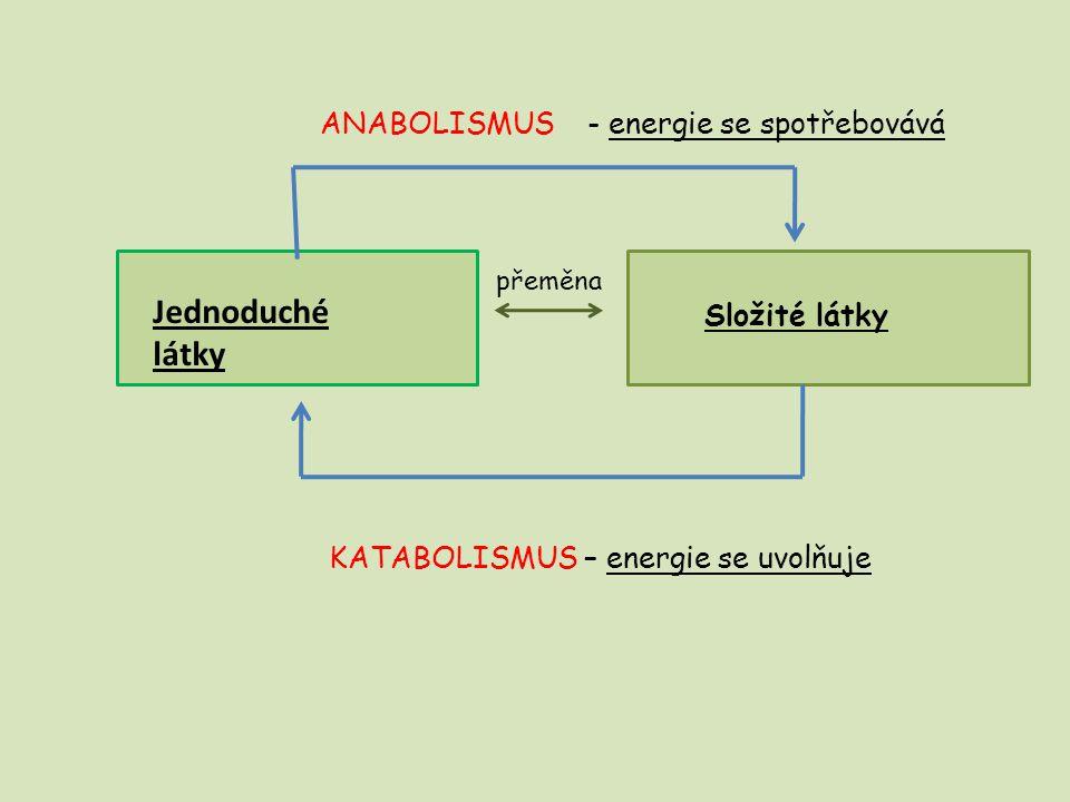 Jednoduché látky ANABOLISMUS - energie se spotřebovává Složité látky