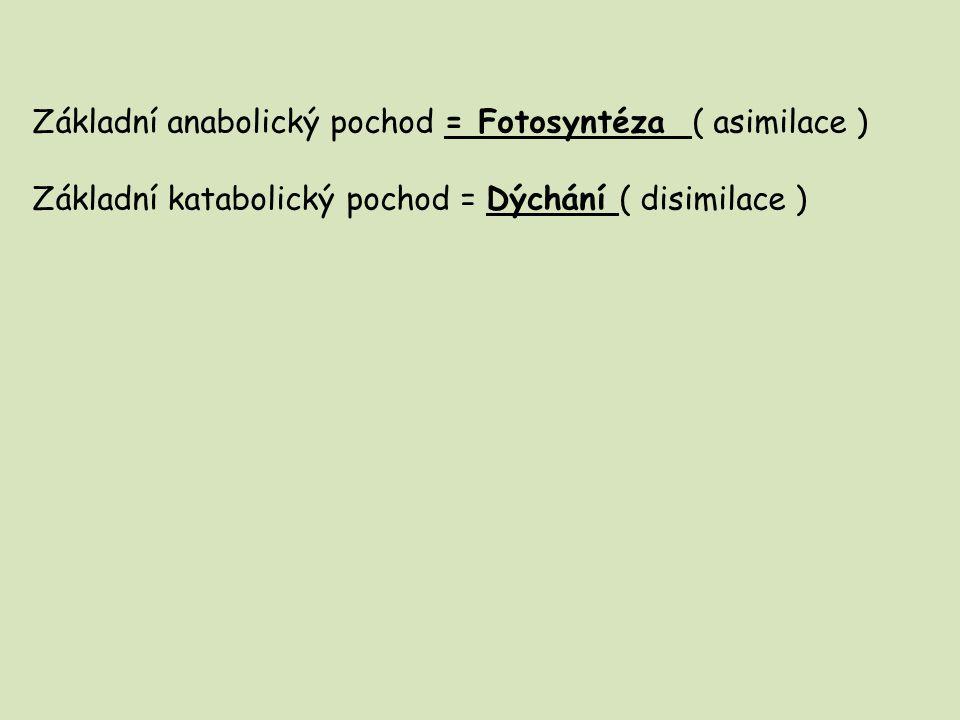 Základní anabolický pochod = Fotosyntéza ( asimilace )