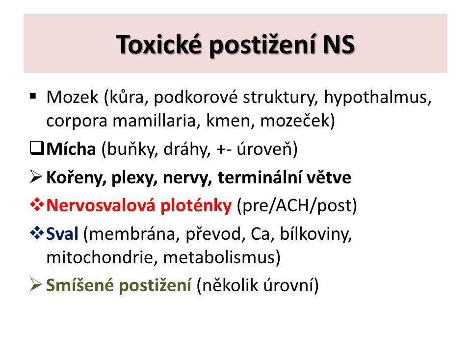 Toxické postižení NS Mozek (kůra, podkorové struktury, hypothalmus, corpora mamillaria, kmen, mozeček)