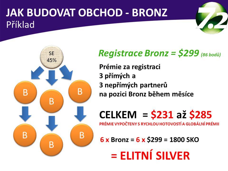 = ELITNÍ SILVER JAK BUDOVAT OBCHOD - BRONZ CELKEM = $231 až $285