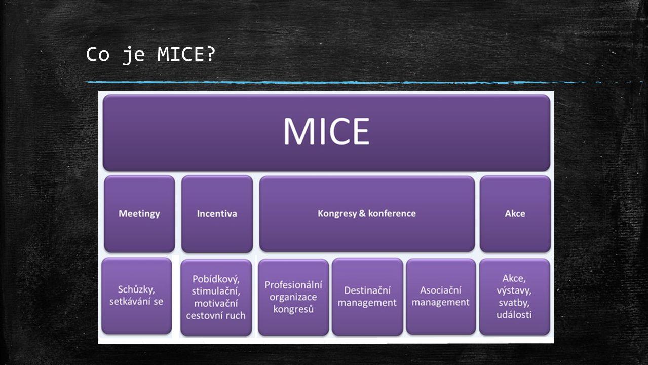 Co je MICE